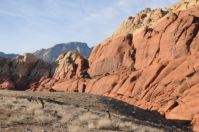 2011_Red_Rock_March_0009