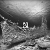 0022Red-Sea-Photographs-Jason-Chambers