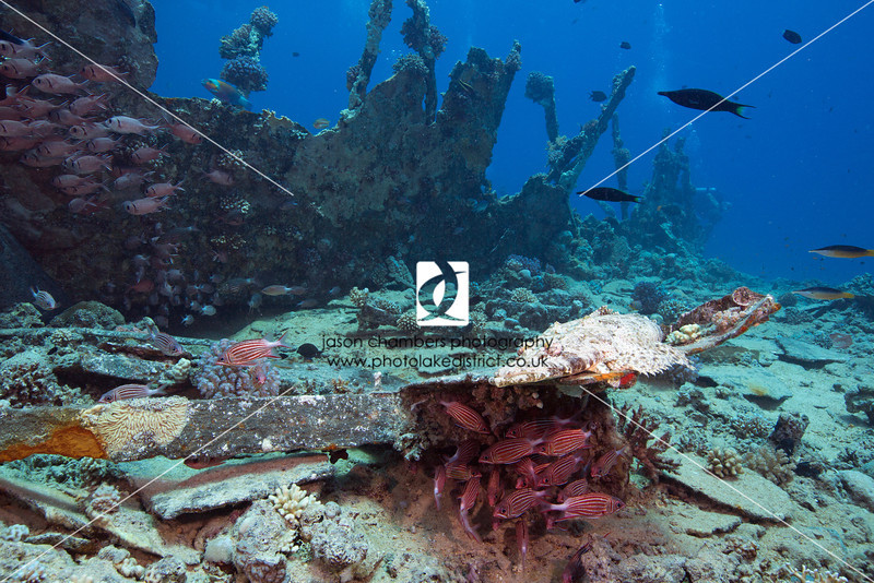 0026Red-Sea-Photographs-Jason-Chambers