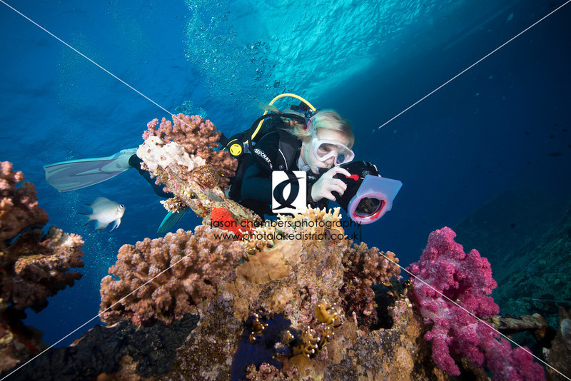 0018Red-Sea-Photographs-Jason-Chambers