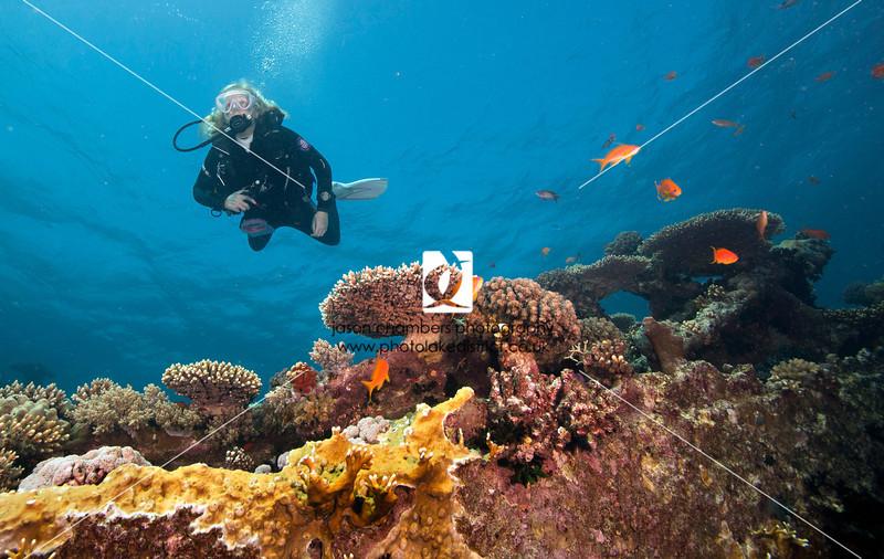 0032Red-Sea-Photographs-Jason-Chambers