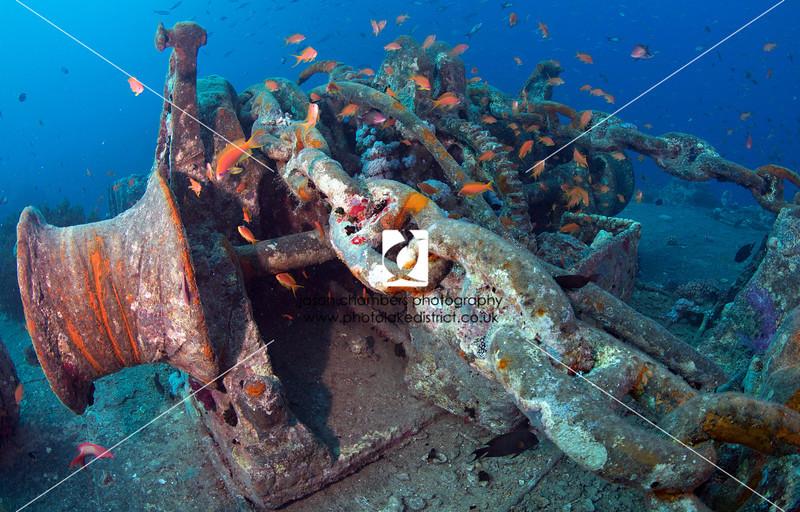 0047Red-Sea-Photographs-Jason-Chambers