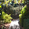 Walkway at ZD Vineyards