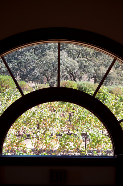 Window to the vineyards at ZD Vineyards