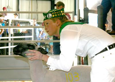 Redwood Empire Fair 2009 - Jr. Auction