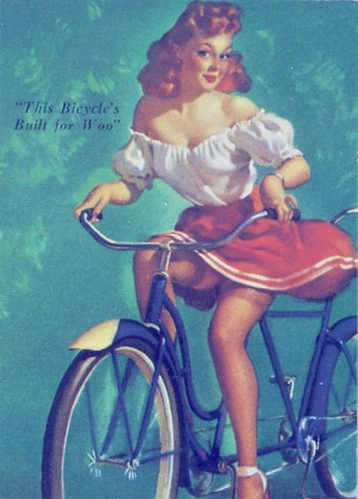 this_bicycles_built_for_woo