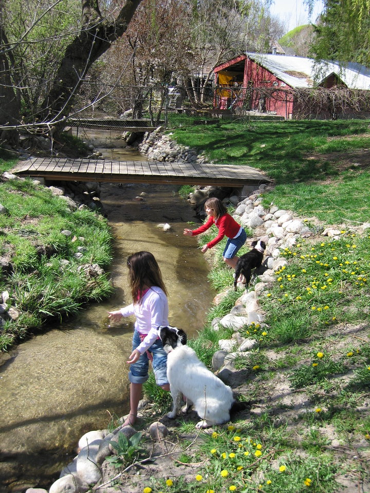 Here's an action shot.  Melisa (in red) is making her first attempt to jump the creek