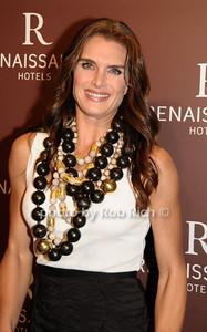 Brooke Shields photo by Rob Rich © 2009 robwayne1@aol.com 516-676-3939