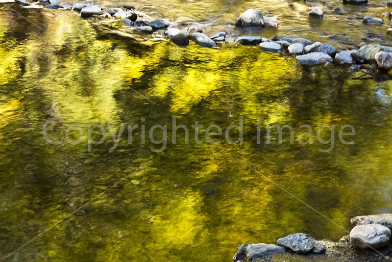 Pointillism in the water