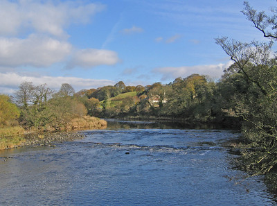IMG_4538 River Ribble SM
