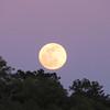 Full moon at sunset