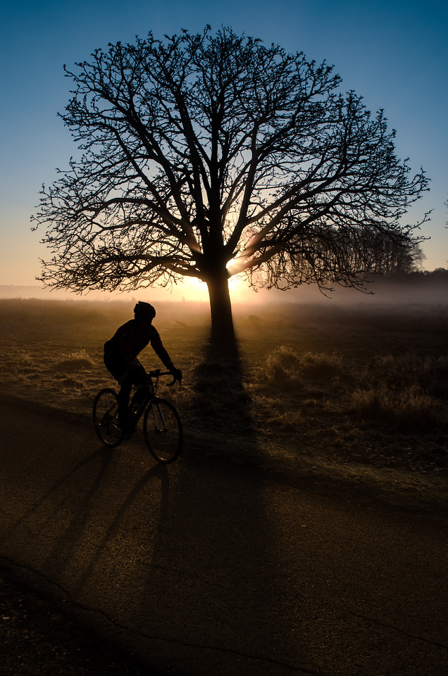 Cycling by...