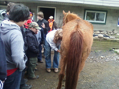 Ricketts Glen and Horsemanship April 2010