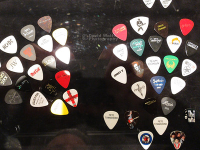Other Picks