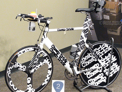 Cheap Trick Triathlete Bike