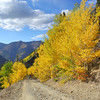 The switchbacks up to Stoney pass in Colorado during the fall colors.