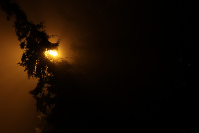 Foggy night in Rishpon
