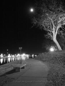 """""""Moon Spotlight"""""""