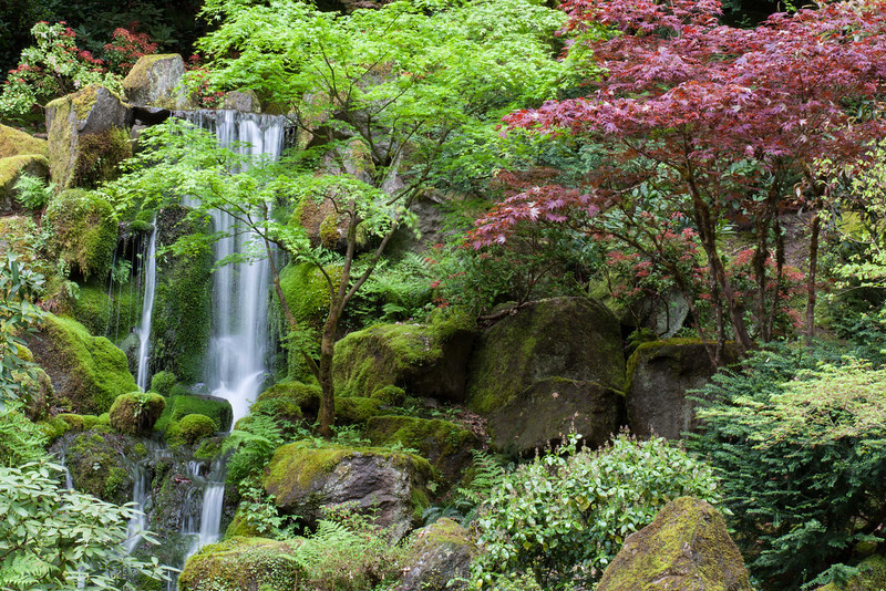 Japanese Garden 17