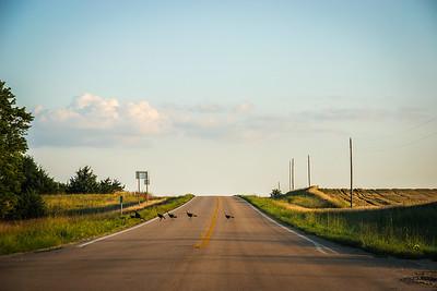 road-1-26