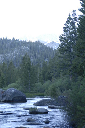 Rock Creek Sierras