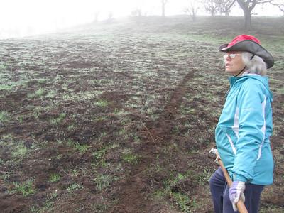 Rock Hollow Hill Site Prep 112911