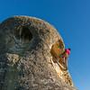 Climbing the Elephant