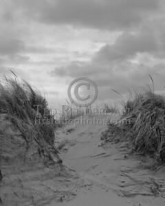 Dunes And Clouds At Wingaersheek Beach - Gloucester,Mass.