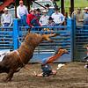Roy Rodeo 06/06