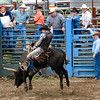 Roy Rodeo 6/06
