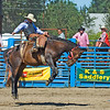 Roy Rodeo 9/07
