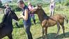 Romanian Riding Trip 2015-1090132