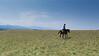 Romanian Riding Trip 2015-1090147