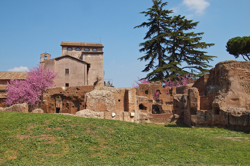 The convergance of the very old (and much older) with some nice Spring colours at the Roman Forum.
