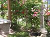 Kwan Yin fountain - Kwan Yin fountain
