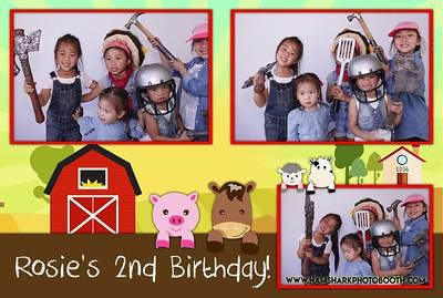 Rosie's 2nd Birthday