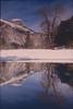 1996 Christmas Yosemite Tree Reflection