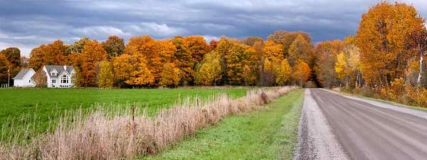 Autumn on Grants Road