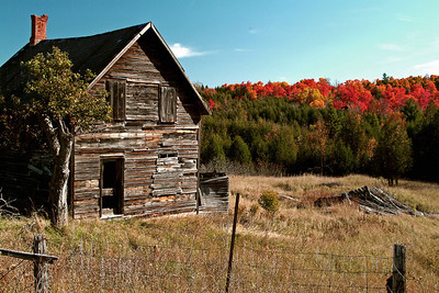Old House In Autumn