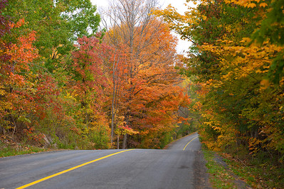 Country Road In Autumn 2