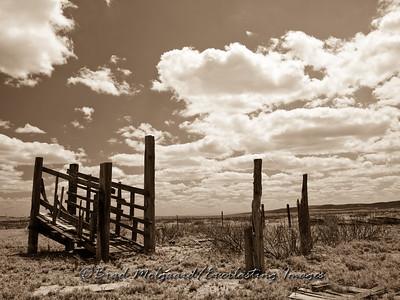 """""""The Loading Chute""""-Carlsbad, Eddy County, New Mexico (sepia)"""