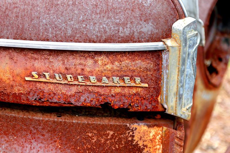 Studebaker by Teresa Pigeon