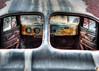 Rear Window by Teresa Pigeon