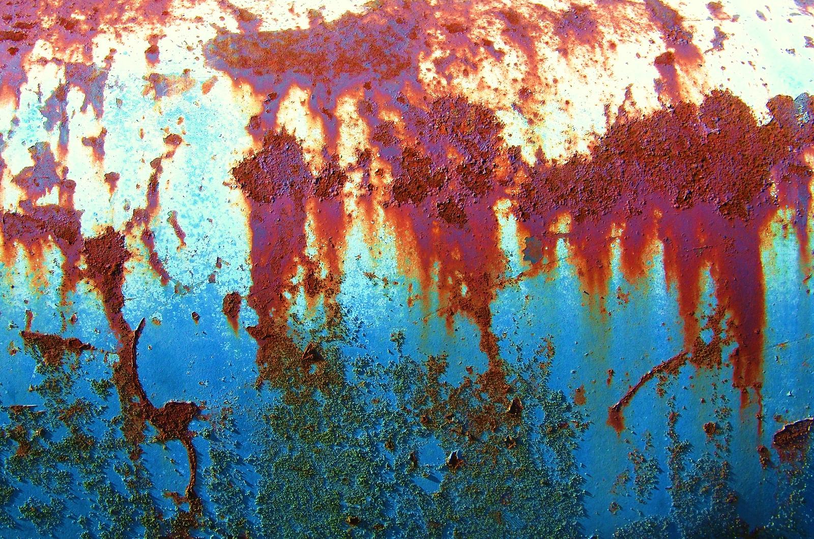 rust%202013%20007-X3.jpg