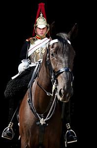 Horseman RX100655