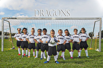 Dragons Soccer Team
