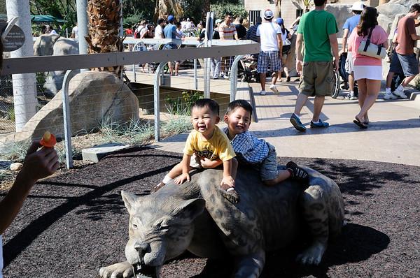 SD Zoo 2009