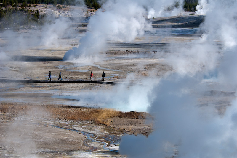 Norris Geyser Basin at Yellowstone NP