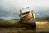 Tamales Bay Fishing Boat