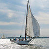2016 - 57th Deal Island Skipjack Race - 3rd place